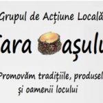 logo GAL TARA OASULUI